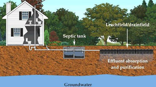 Graphic of septic system - why Rid-x is bad for your septic