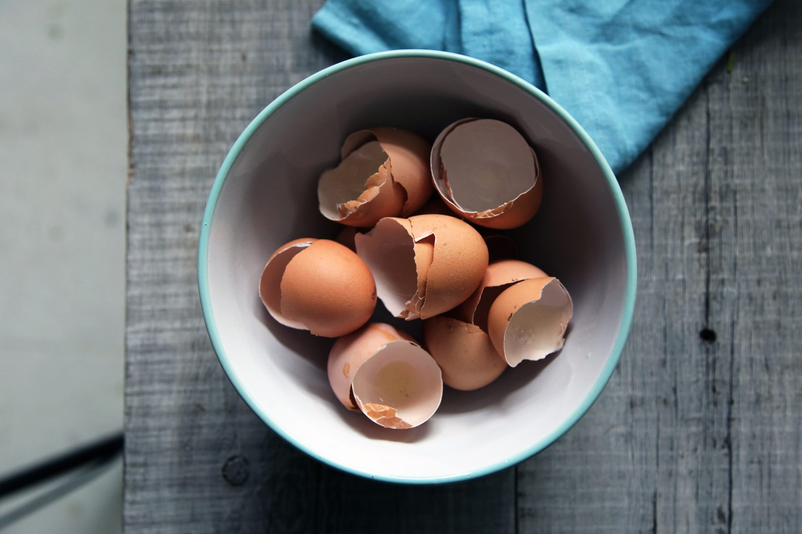 Egg Shells in a bowl, not to be put in your garbage disposal